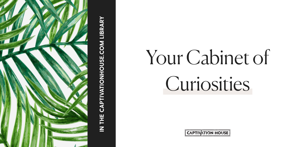 Your cabinet of curiosities
